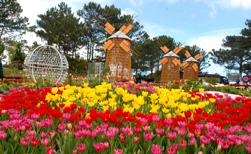 Image result for Dalat Flower Gardens