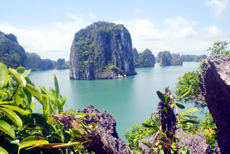 Exploring the marvelous Voi Voi small bay in Quang Ninh