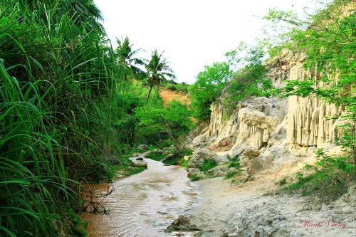 Fairy Stream ( Suoi Tien)