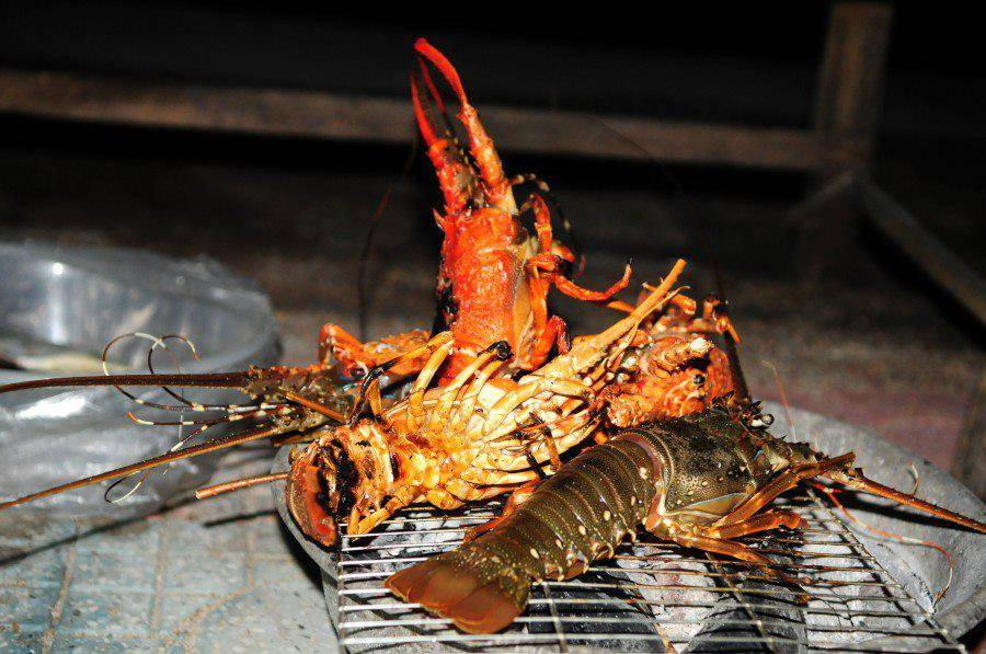 Discovering lobster island of Binh Ba in Cam Ranh, Khanh Hoa