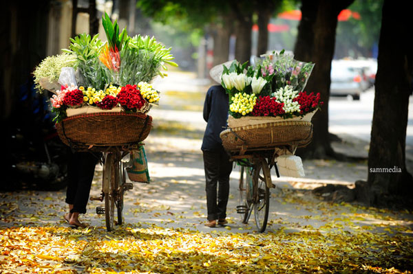 Vietnam is ranked 3rd must-come destination in 2015