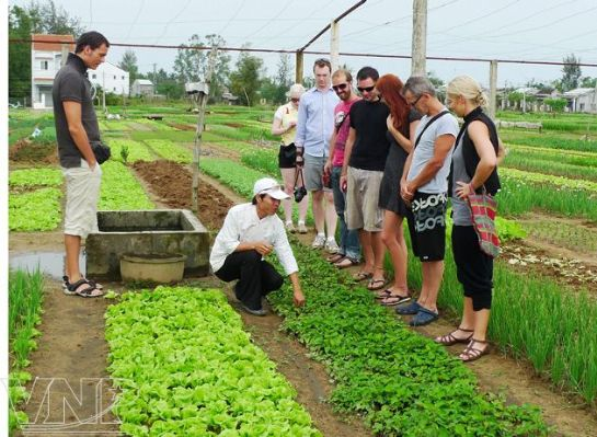 "Visiting the first ""Green Fair"" in Tra Que village (Hoi An, Quang Nam Province)"